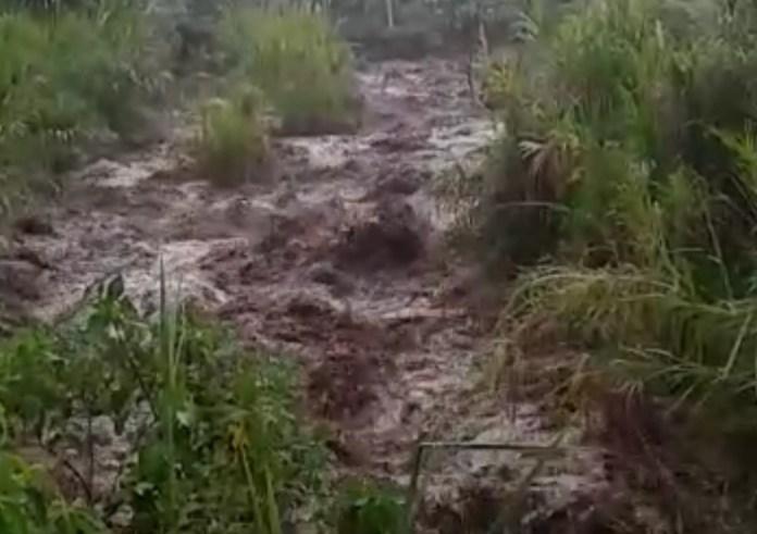 Una emergencia ocasionada por fuertes lluvias y el desbordamiento de varias quebradas, afectó varias viviendas en las veredas El Vergel y Zuluaguita, organismos de socorro de Gigante y Garzón atienden la situación.