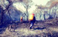 Ola de incendios forestales preocupa a las autoridades en Nátaga