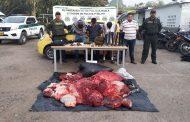 A la cárcel enviados por carneo en Pitalito