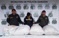 Capturados tres jóvenes que habían hurtado café en finca de Garzón