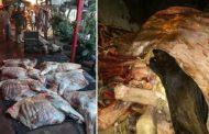 Incautan y destruyen más de una tonelada de carne ilegal en Timaná