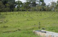 Entregan finca de 4 hectáreas a colegio de Pitalito para prácticas agropecuarias
