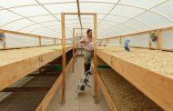 Proyecto de construcción de secaderos de café para productores de Paicol
