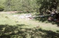 Denuncian contaminación en zona aledaña a Timaná